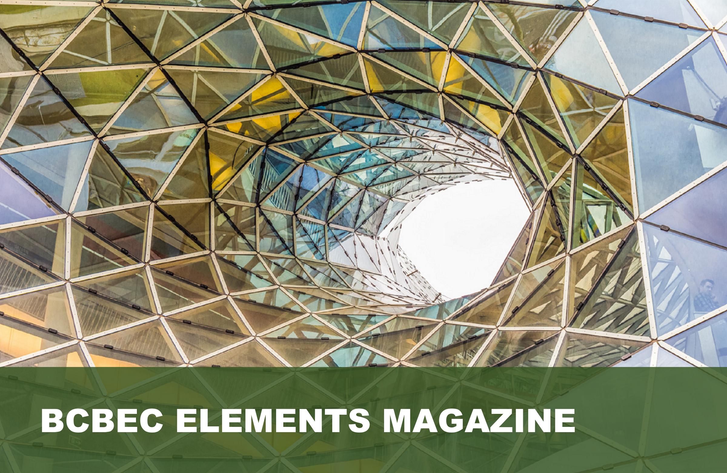 bcbec elements magazine